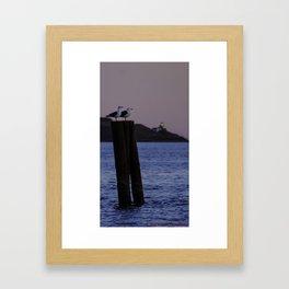 Sunset Observers Framed Art Print