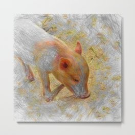 Artistic Animal Piglet Metal Print