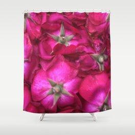 ROSE BACKS Shower Curtain