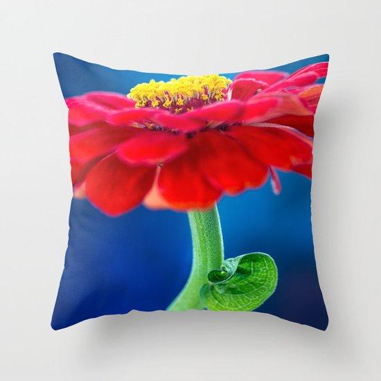COLOR BLOCKING | RGB Throw Pillow