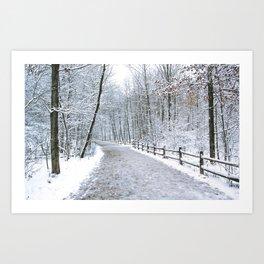 Snowfall at Brickworks on Christmas Day, 2020. LXXIX Art Print