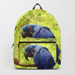 Pretty Boy Backpack