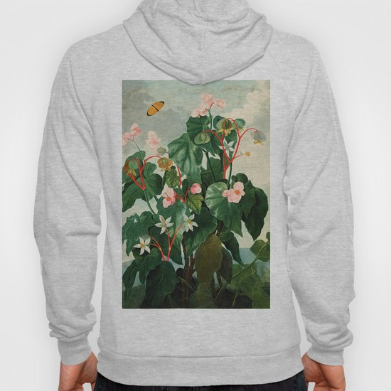 Pink Floral The Oblique-Leaved Begonias : Temple of Flora by purelove