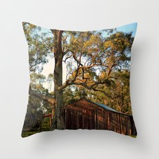 Rural Shed Throw Pillow