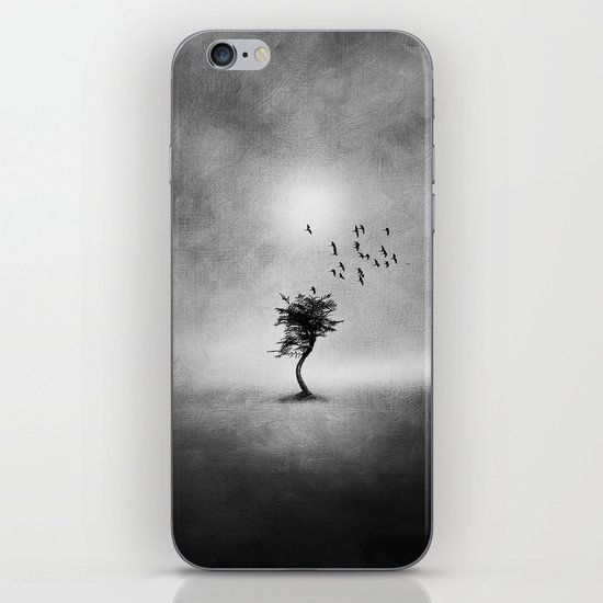 Minimal B&W II iPhone & iPod Skin