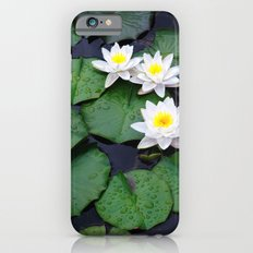 Lilly pad blossom  iPhone 6s Slim Case