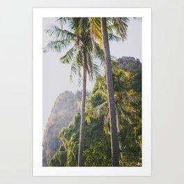 Palm Trees in Thailand Art Print