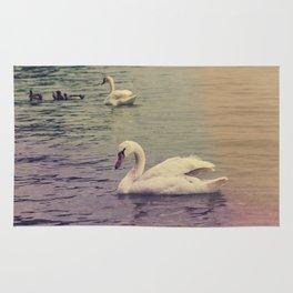 Swans Rug