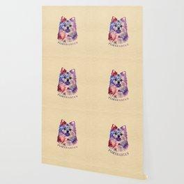 Cute Pomeranian German Spitz Wallpaper
