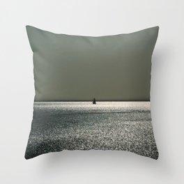 ~ Shining ~ Shimmering ~ Splendid ~ Throw Pillow