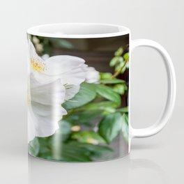 Camellia Bloom Flower Coffee Mug