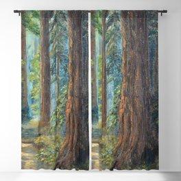 Big Basin Redwood Grove, California landscape painting by Leonora Naylor Penniman Blackout Curtain
