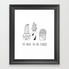suc where you are planted Framed Art Print