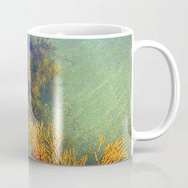 Coastal Calm Coffee Mug