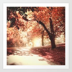 Autumn fall Art Print