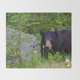 Black bear munches on some dandelions in Jasper National Park Throw Blanket