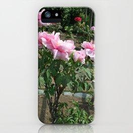 Tokyo Hama Rikyuu Koen 1 iPhone Case