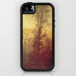 Quite Morning iPhone Case