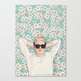 Niall daisies field Canvas Print