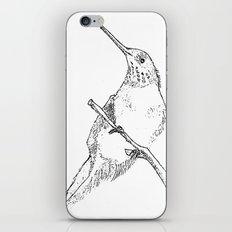 bird sketch iPhone & iPod Skin
