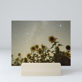 Sunflower Cosmos Mini Art Print