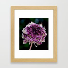 field carmine flower Framed Art Print