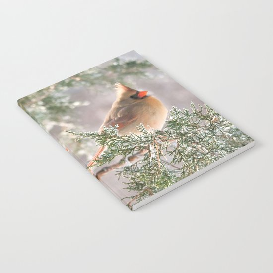 Hoarfrost Cardinals Notebook