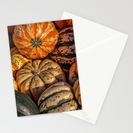 Winter Squash Stationery Cards