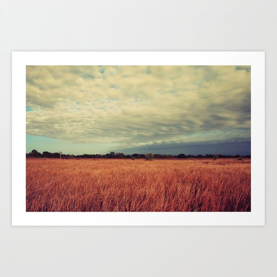 Sway the day away  Art Print