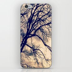Naked Trees iPhone & iPod Skin