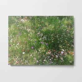 Scottish Summer Wildflower Meadow Metal Print