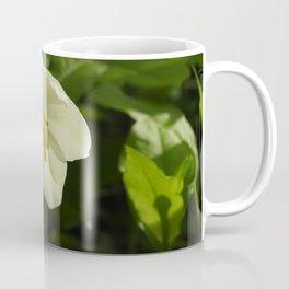 Mayapple blossom Coffee Mug