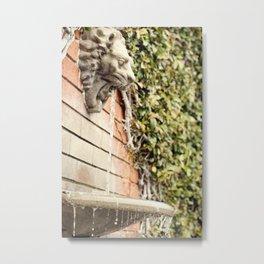 Lion Water Fountain Metal Print