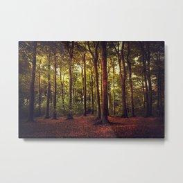 october forest II Metal Print