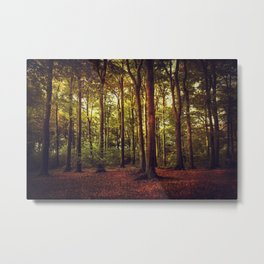 october forest II Metal Print