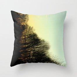 Descend Throw Pillow
