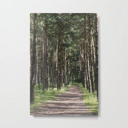English Woodland Walk Fine Art Photography Metal Print