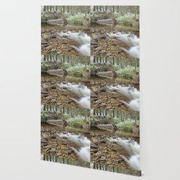 Winter stream Wallpaper