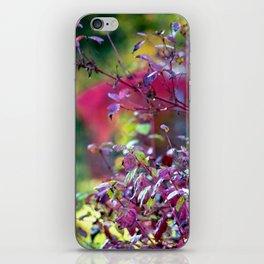 Autumn colours iPhone Skin