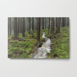 Water always flows downhill Metal Print