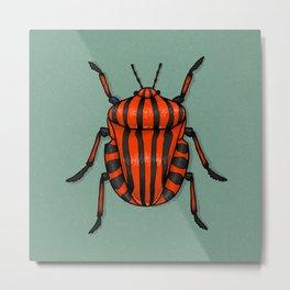 Minstrel Beetle Metal Print
