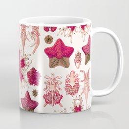Ernst Haeckel - Scientific Illustration - Asteroidea (Red) Coffee Mug