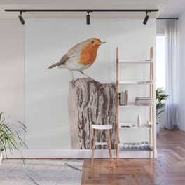 The Robin, A Realistic Watercolor Painting Wall Mural