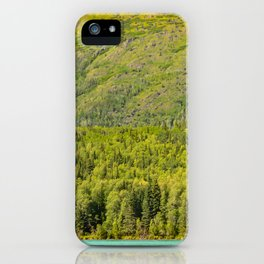Alaskan Autumn - Painting 2 iPhone Case