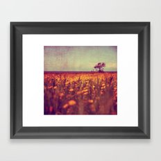lying in a field of daisies Framed Art Print