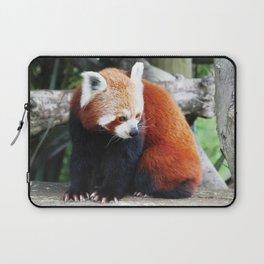 Red Panda Laptop Sleeve