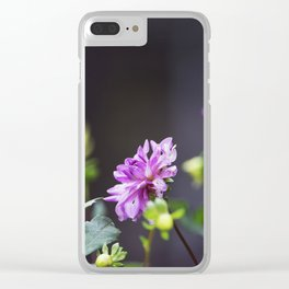 Longwood Gardens Autumn Series 103 Clear iPhone Case