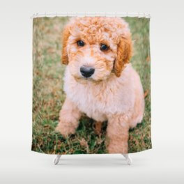 Cute Puppy by Erick Lee Hodge Shower Curtain
