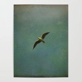 Vintage Flight Poster