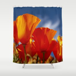 California Dark Orange Tangerine Poppies in Sunny Field Shower Curtain